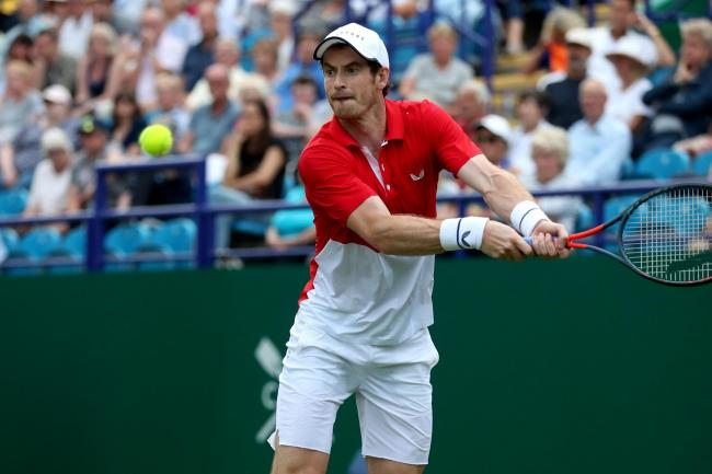 Andy Murray fell to first-round doubles defeat at the Nature Valley International on Tuesday.