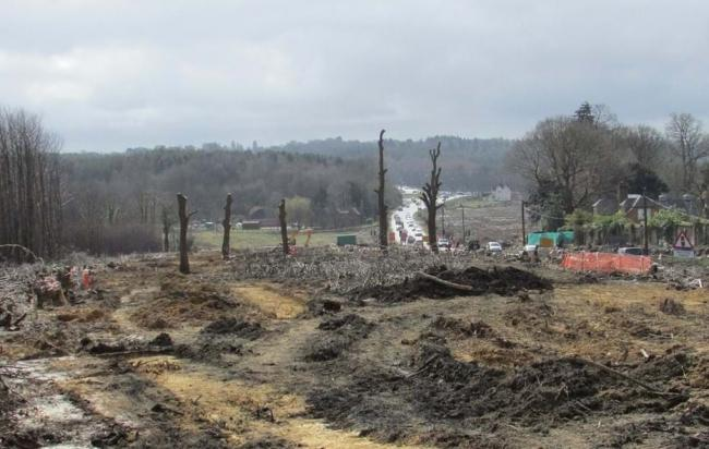 Credit: Ben Holmes/WTML - Cllr Mark Connolly believes tree felling project in Tidworth will ruin wildlife