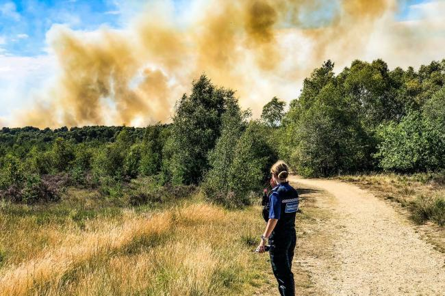 Homes have since been evacuated as the blaze continues at Chobham Common