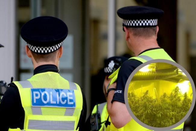 Properties in King George Road, May Tree Road and Silver Birch Road were raided