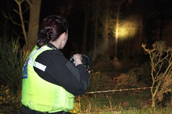 Botley teenager fined for poaching near Alresford