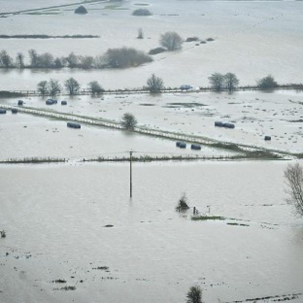 Flooded Somerset Levels as heavy rain continues to fall on already drenched fields and swollen rivers in the area
