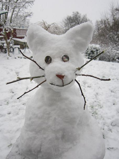 Andover Advertiser: Snow cat in Bitterne