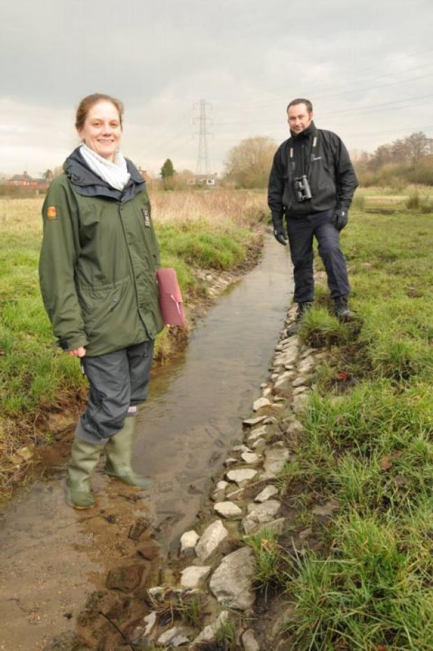Plan for Old Basing stream to attract wildlife