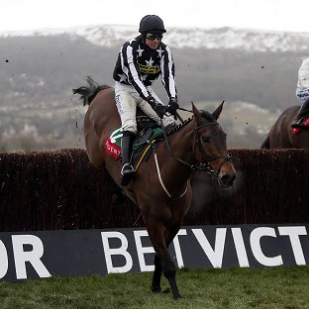 Imperial Commander has been ruled out of the Betfred Cheltenham Gold Cup