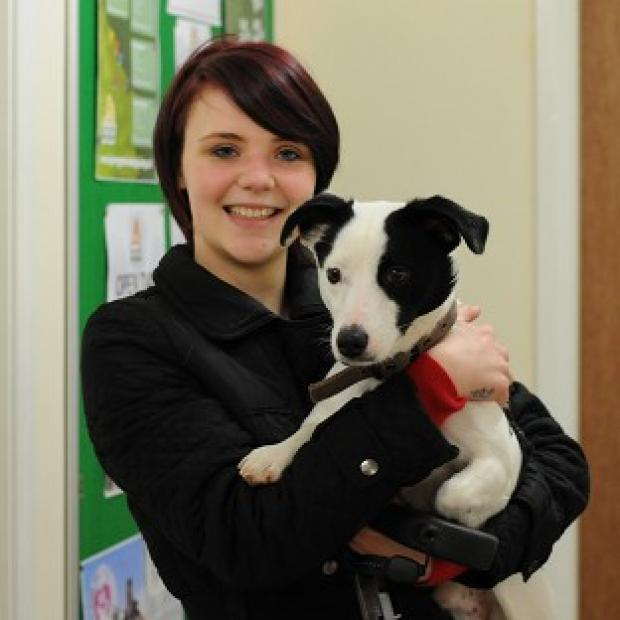 Alice Thompson, 21, from Winterton, North Lincolnshire, has been reunited with dog Patch