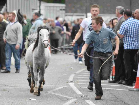 Road closures today for Wickham Horse Fair