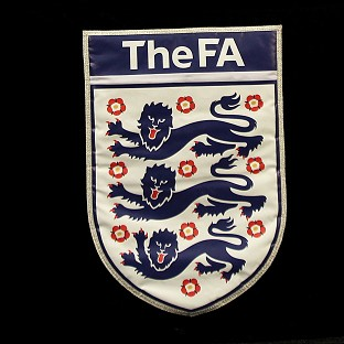 Michael Johnson has stepped down from the FA's inclusion advisory board