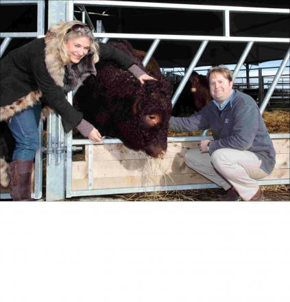 Sarah Jane Fairey and William Buckley with their cattle on Bossington Estate, in Houghton