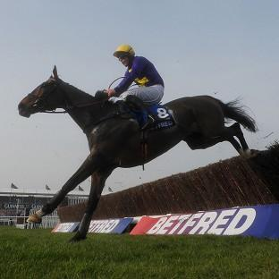 Andover Advertiser: Lord Windermere, pictured, held off On His Own to win the Gold Cup