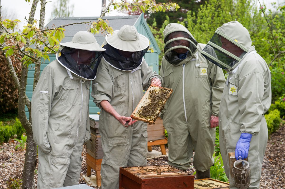 Bee hives donated to Sparsholt College as part of centenary celebrations