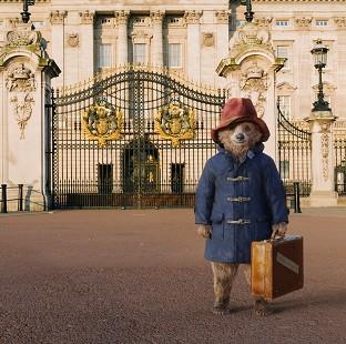 Andover Advertiser: Paddington the movie star from darkest Peru - but without the voice of Colin Firth