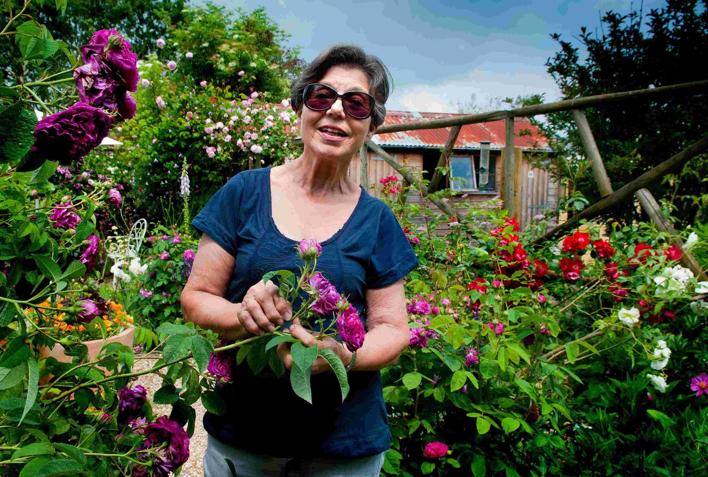 Tucked away gardens opened for charity