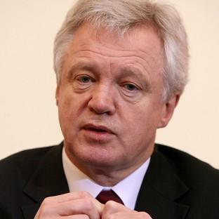 David Davis (pictured) and Tom Watson are applying for a judicial review