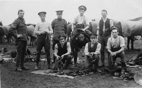 The work of Romsey Remount Camp will be commemorated at this year's Romsey Show