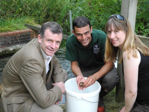 Conservationists team up to save Britain's last endangered crayfish