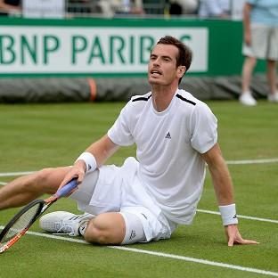 Andy Murray's, pictured, mixed form is a concern for the US Open, according to John McEnroe