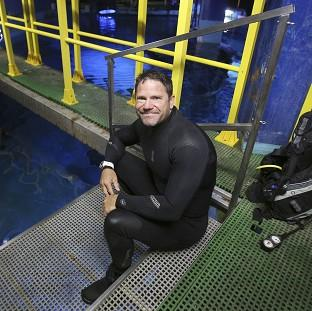 Wildlife TV presenter Steve Backshall has signed up for the new series of Strictly Come Dancing