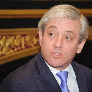 Speaker John Bercow has put Carol Mills forward for the job