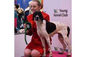 North Hampshire dog lovers ready for Crufts