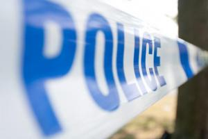 Police receive a number of calls of criminal damage around village