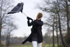 Storm Eleanor set to batter Hampshire with high winds tonight and tomorrow