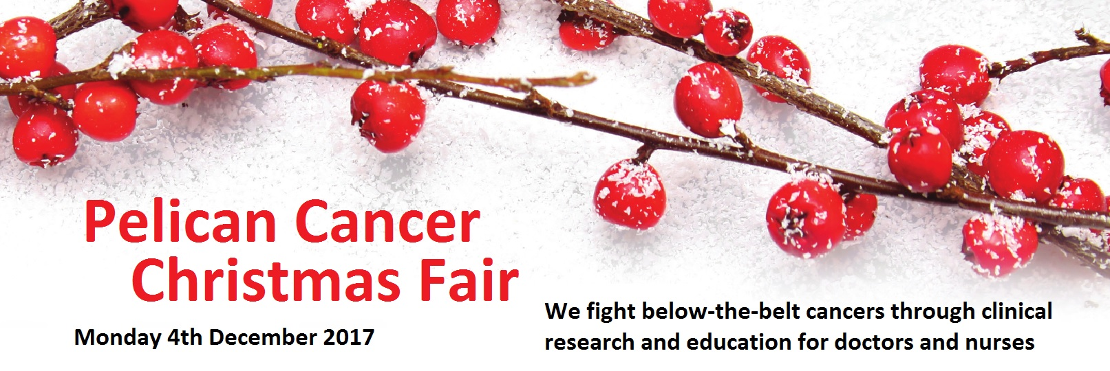 Pelican Cancer Christmas Fair