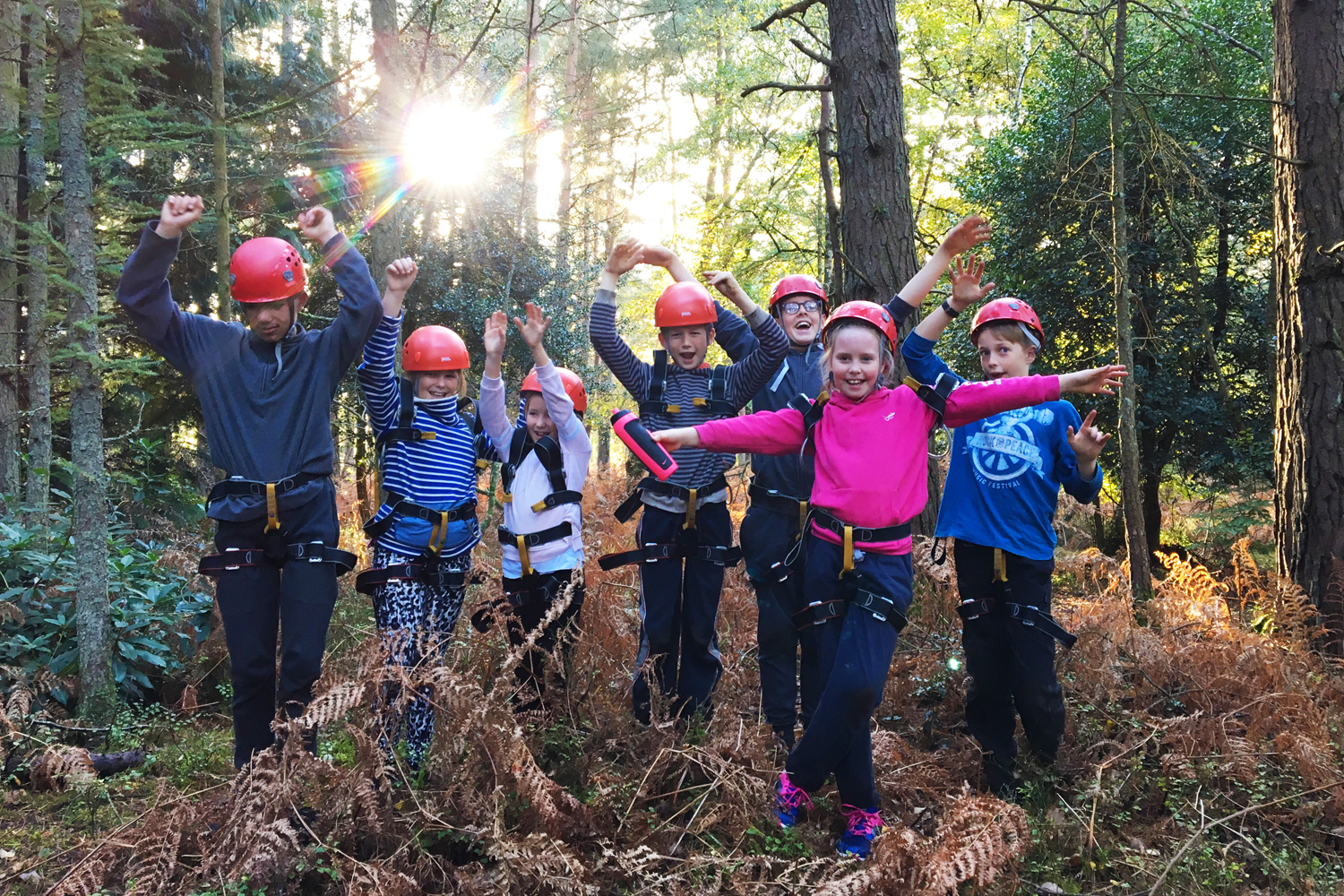 Holiday Adventure Day with New Forest Activities