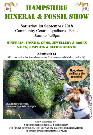 Hampshire Mineral & Fossil Show