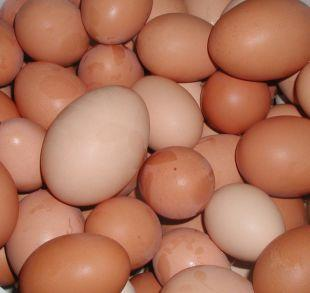 Andover Advertiser: Shopkeepers ban youngsters from buying eggs